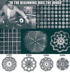 cymatics 72475338_672730946550685_2751971935242944512_n